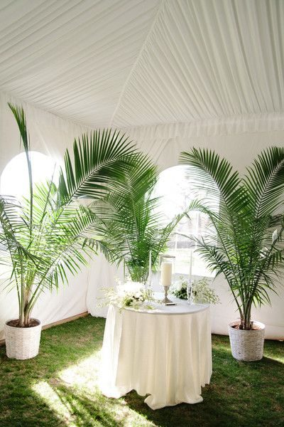 plant rentals for weddings and receptions